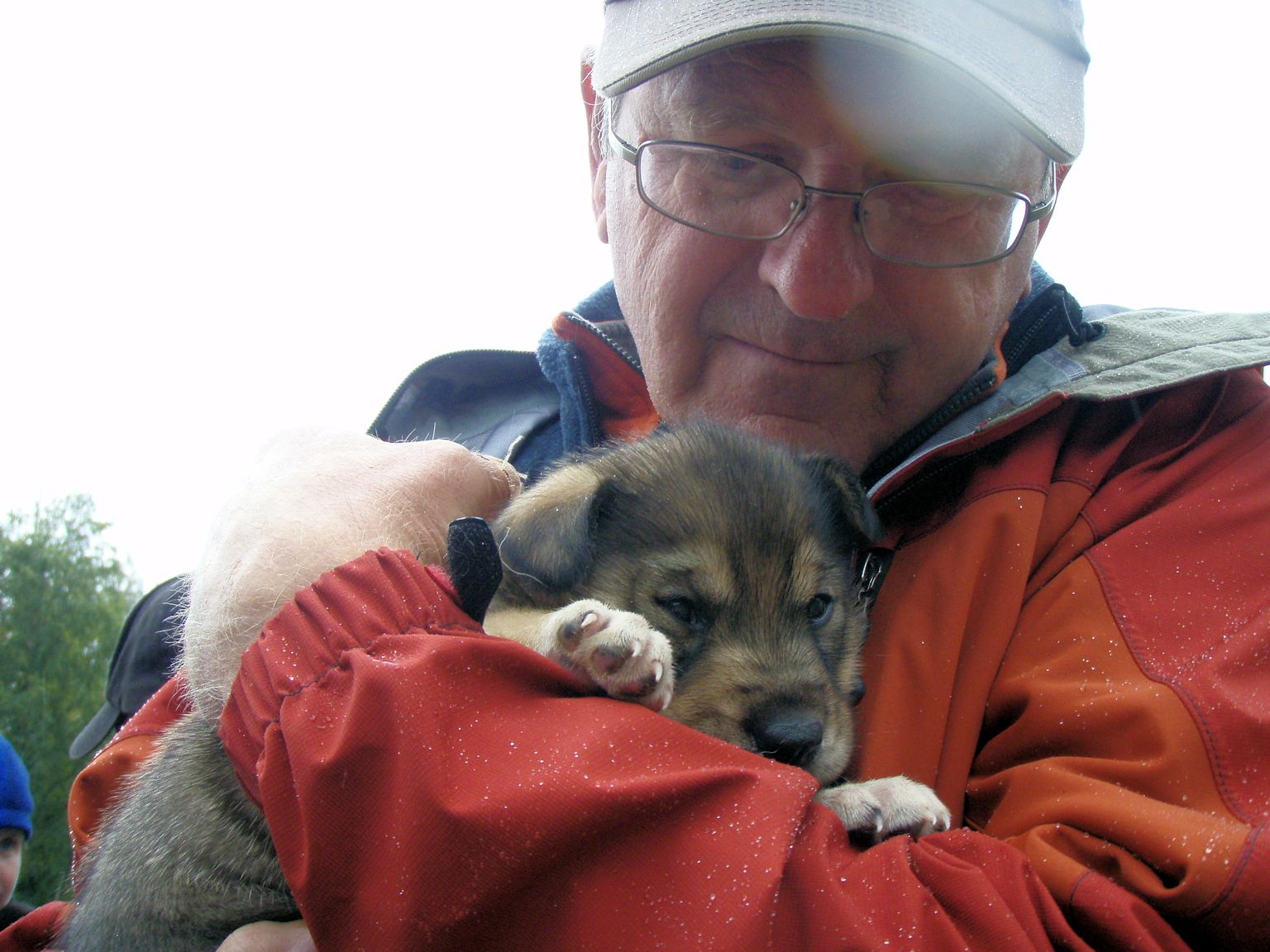Puppy-cuddling a future sled dog